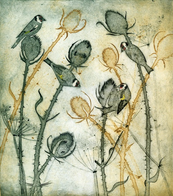 charm of goldfinches kerry buck