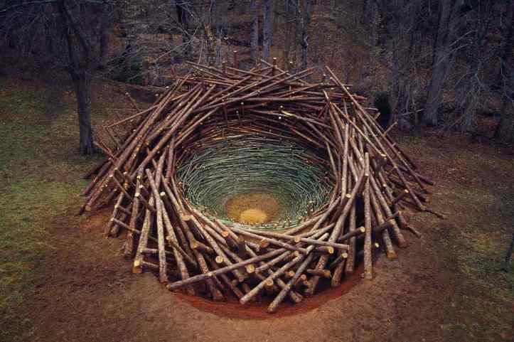 Nils-Udo-Clemson-Clay-Nest-2005-via-grrlandog-tumblr