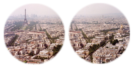 Paris with full visual fields.png