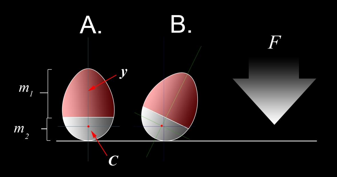 Weebleprinciple.jpg