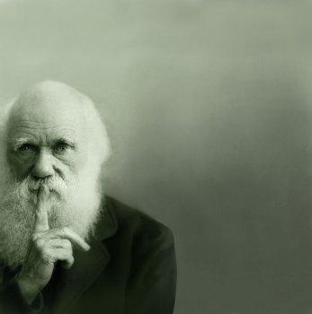 darwin.jpeg