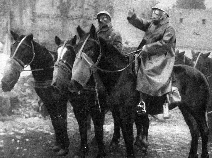 war-horses.jpg