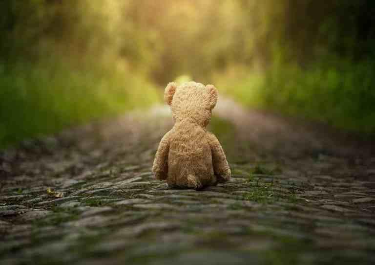 lonely teddy.jpg